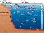 Ekosistem Perairan