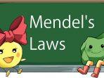 Hukum Mendel I dan Hukum Mendel II
