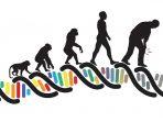 Konsep-konsep dan Mekanisme Evolusi