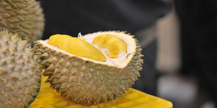 Pecinta Durian_ Inilah Cara Memilih Buah Durian Yang Dagingnya Tebal dan Tentunya Enak