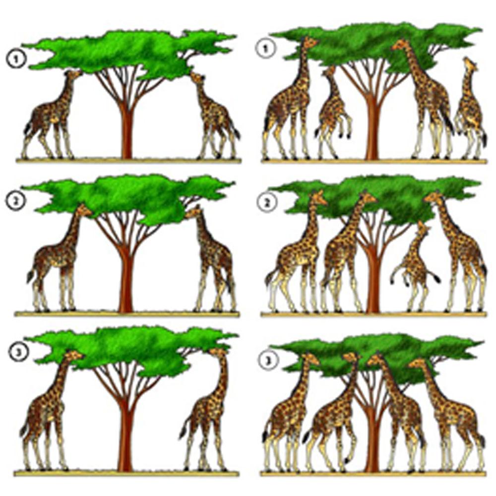 Pemikiran Lamarck